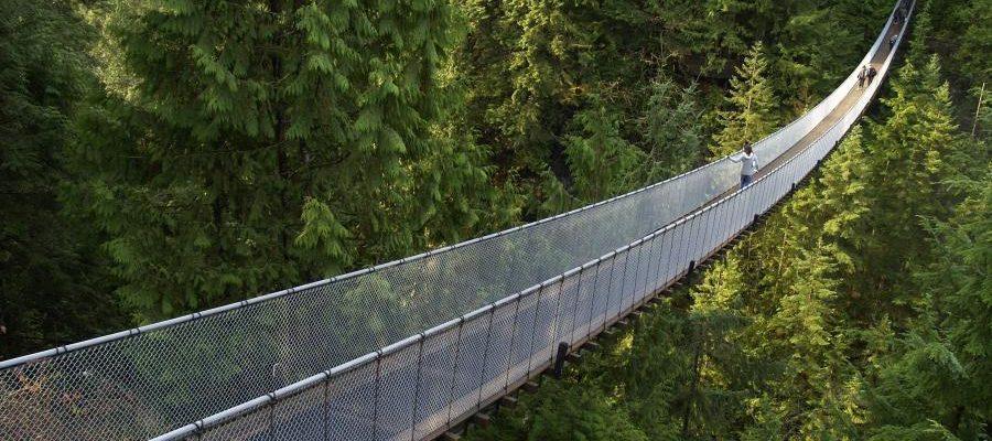 6 Hikings En Vancouver Con Aproximacion En Transporte Publico