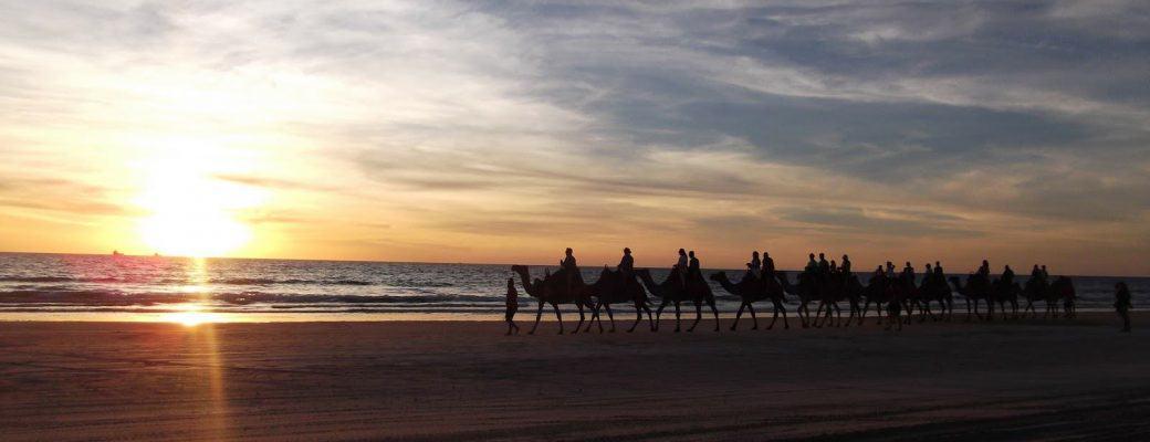 Working Holiday Australia. Capitulo 6.